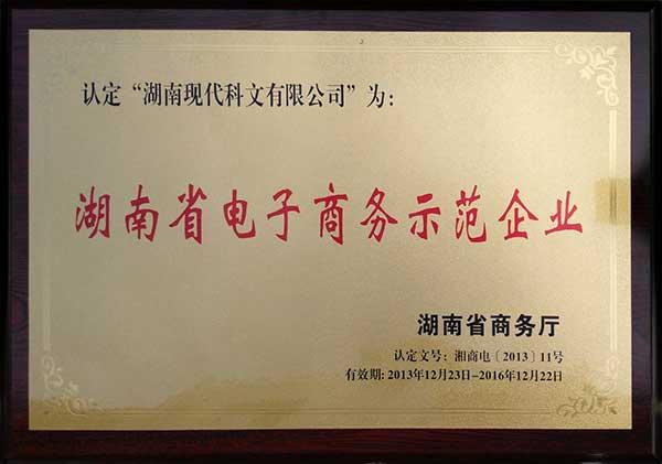 悬浮地板厂家资质-湖南省电子商务示范企业